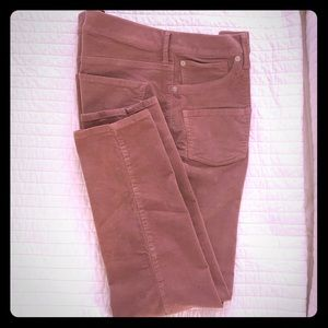 EXPRESS Mauve Blush Corduroy Ankle Legging
